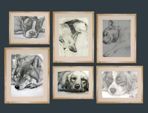 dog collage2