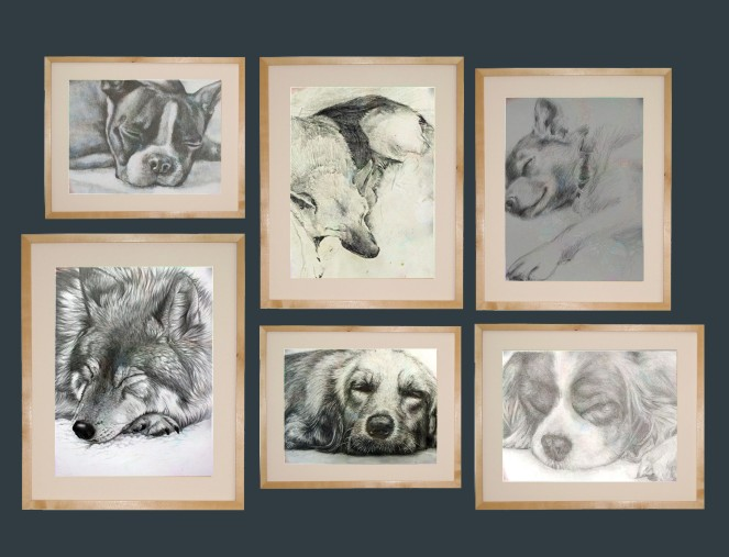 dog collage2